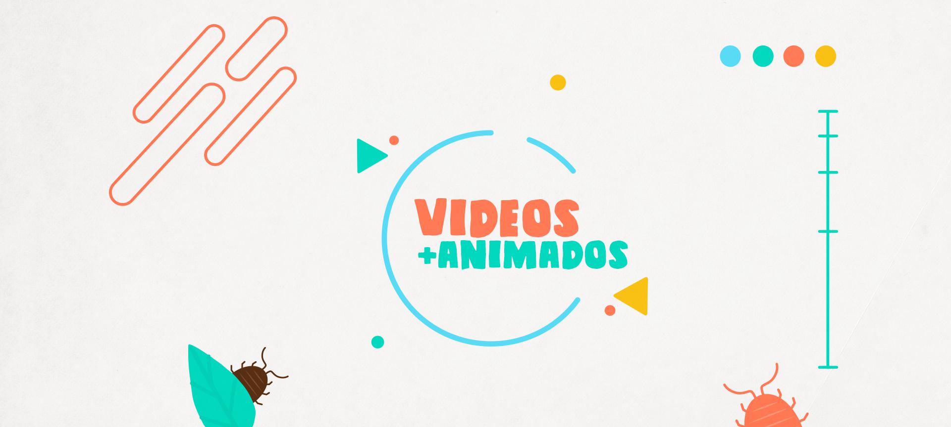 Bicho Bolita Videos